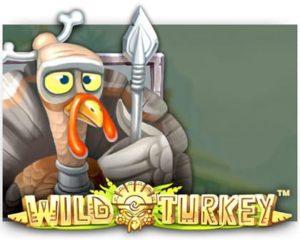 Wild Turkery